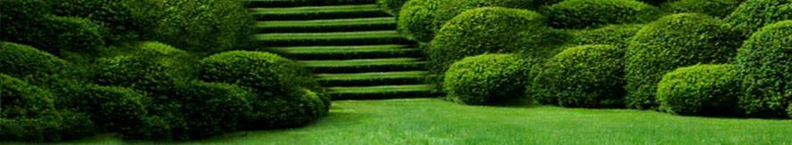Fca Gmbh Leistungen Garten Und Landschaft